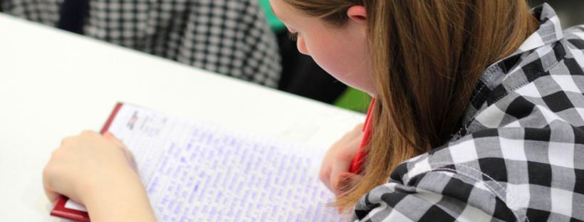 how make make your essay a mark magnet